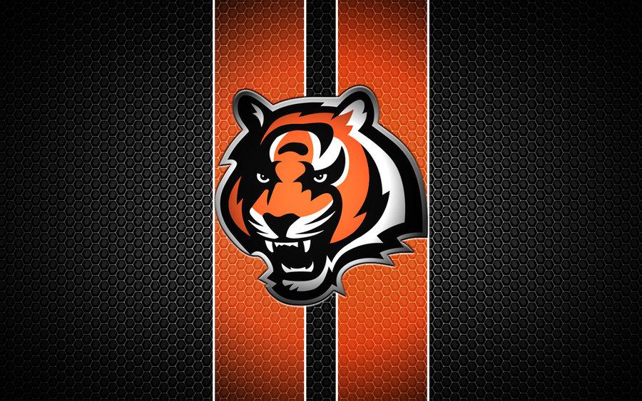 Offseason 2013: Cincinnati Bengals