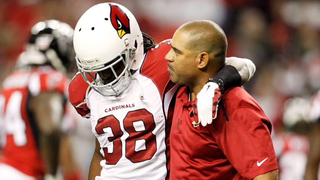 120214-NFL-Arizona-Cardinals-Andre-Ellingto