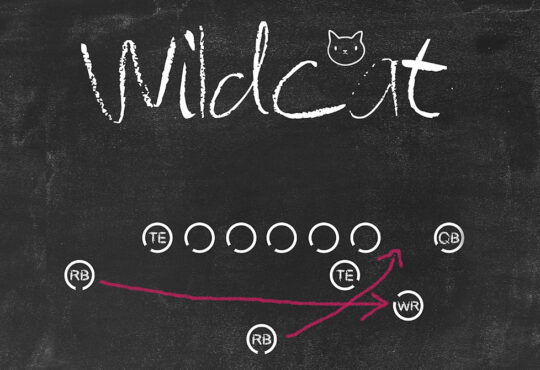 Wildcat: Η εικόνα της NFC, και τα φετινά draft των ομάδων